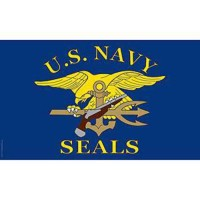 Drapeau us navy seals